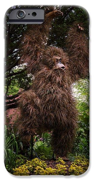 Botanical Figures iPhone Cases - Orangutan iPhone Case by Joan Carroll