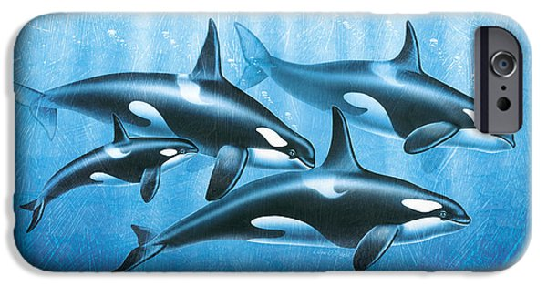 Ocean Mammals iPhone Cases - Orca Group iPhone Case by JQ Licensing