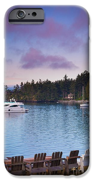 Stillness iPhone Cases - Orcas Viewpoint iPhone Case by Inge Johnsson