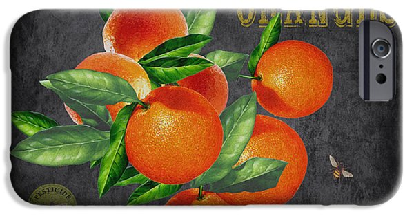 Locally Grown iPhone Cases - Orchard Fresh Oranges-JP2641 iPhone Case by Jean Plout