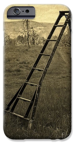 Work Tool iPhone Cases - Orchard Ladder iPhone Case by Edward Fielding