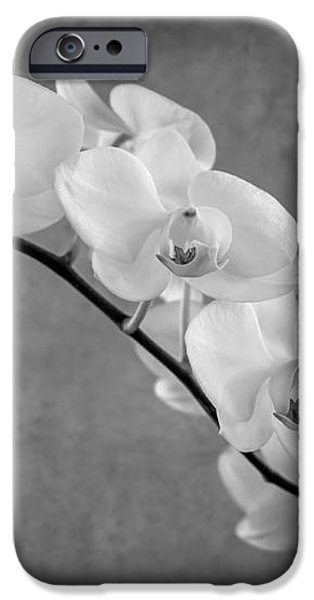 orchid bw iPhone Case by Hannes Cmarits
