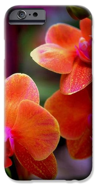 ORCHID MELODY iPhone Case by KAREN WILES