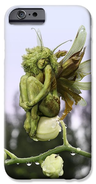 Fairy Tale iPhone Cases - Orchid Pixie iPhone Case by Cassiopeia Art