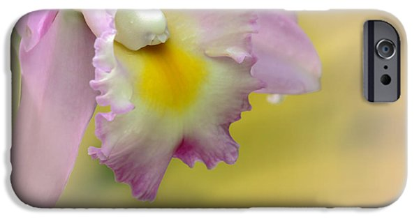 Pinky iPhone Cases - Orchid Whisper iPhone Case by Sabrina L Ryan