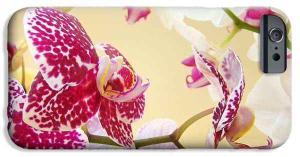 Orchids Photographs iPhone Cases - Orchids Floral art Prints Orchid Flowers iPhone Case by Baslee Troutman