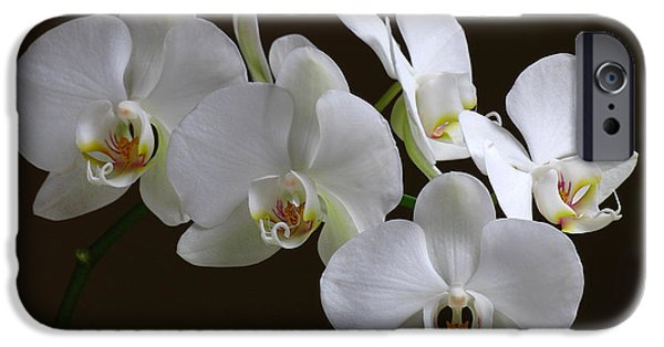 White Orchid iPhone Cases - Orchids iPhone Case by Juergen Roth