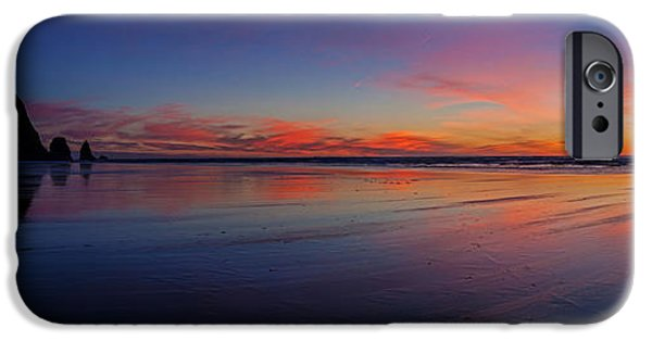 Animals Photographs iPhone Cases - Oregon Coast Sunset Sandscape iPhone Case by Mike Reid