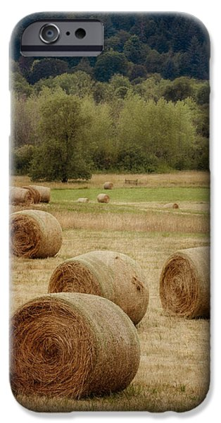 Hay Bales iPhone Cases - Oregon Hay Bales iPhone Case by Carol Leigh