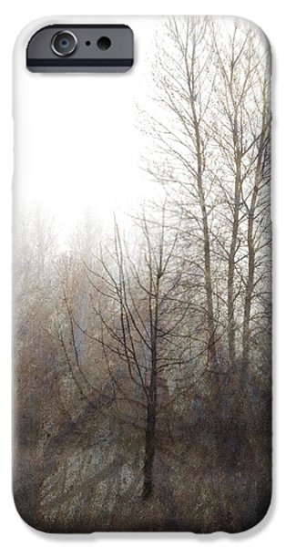Oregon Winter iPhone Case by Carol Leigh