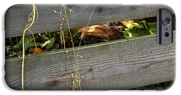 Wooden Crate iPhone Cases - Organic Compost in Wood Crate iPhone Case by Iris Richardson