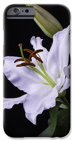 Oriental iPhone Cases - Oriental Lily iPhone Case by Garry Gay