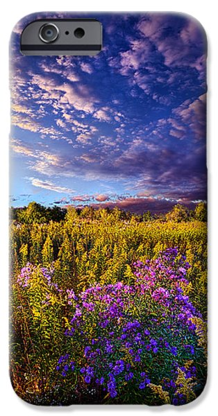 Rural iPhone Cases - Origins iPhone Case by Phil Koch