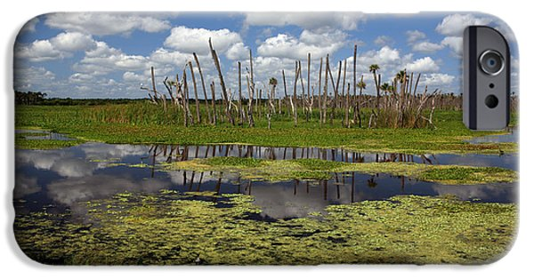 Wetlands iPhone Cases - Orlando Wetlands Cloudscape 2 iPhone Case by Mike Reid
