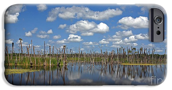 Wetlands iPhone Cases - Orlando Wetlands Cloudscape 3 iPhone Case by Mike Reid