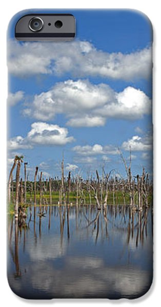 Orlando Wetlands Cloudscape 3 iPhone Case by Mike Reid