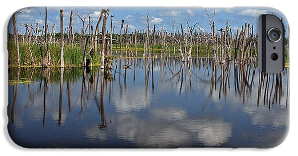 Wetlands iPhone Cases - Orlando Wetlands Cloudscape 5 iPhone Case by Mike Reid