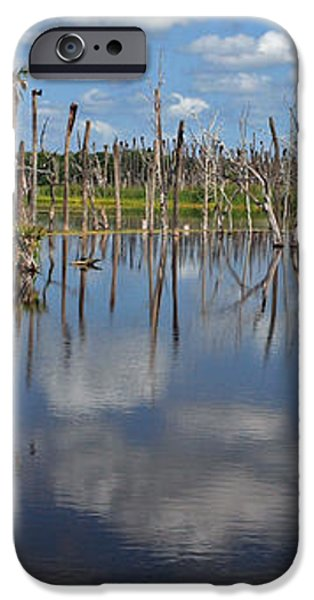 Orlando Wetlands Cloudscape 5 iPhone Case by Mike Reid
