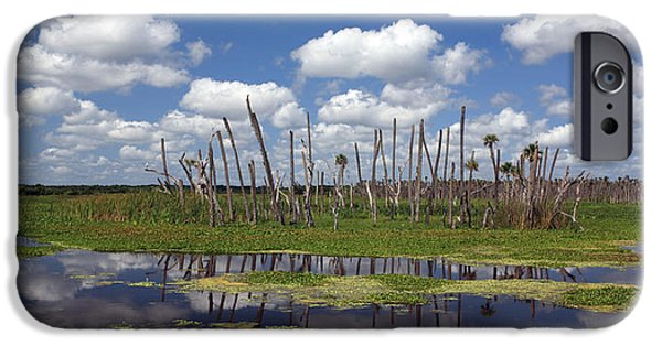 Wetlands iPhone Cases - Orlando Wetlands Cloudscape iPhone Case by Mike Reid