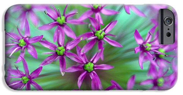 Purple Sensation iPhone Cases - Ornamental Onion - Purple Sensation iPhone Case by Terry Elniski