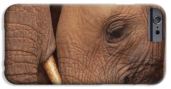David iPhone Cases - Orphans Malaika And Natumi Tsavo Kenya iPhone Case by Gerry Ellis