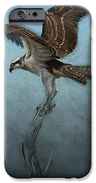 Digital Drawing iPhone Cases - Osprey iPhone Case by Aaron Blaise