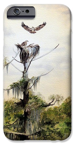 Recently Sold -  - Sea Birds iPhone Cases - Ospreys Nesting Wakulla River iPhone Case by Bill Holkham