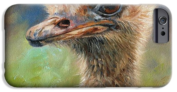 Ostrich iPhone Cases - Ostrich iPhone Case by David Stribbling