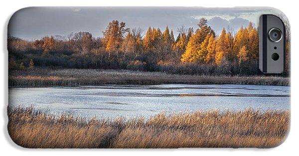Ottawa iPhone Cases - Ottawa Lake Fen in Autumn iPhone Case by Scott Norris