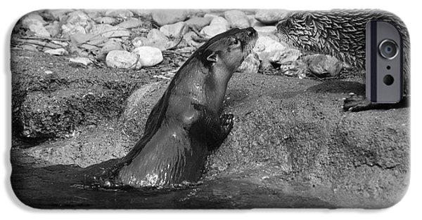 Otter Digital Art iPhone Cases - Otter To Otter iPhone Case by Jake Danishevsky
