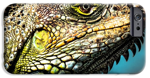 Iguana iPhone Cases - Our Creators Mosaic Art iPhone Case by Karen Wiles