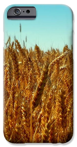 OUR DAILY BREAD iPhone Case by KAREN WILES