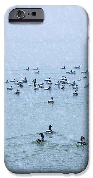 Canandaigua Lake iPhone Cases - Out Going iPhone Case by Roger Bailey