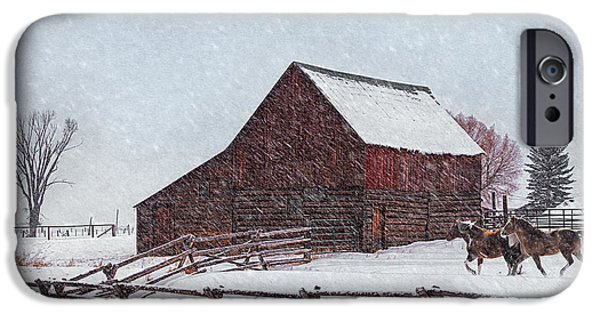 Red Barn In Winter iPhone Cases - Out in the Snow iPhone Case by Priscilla Burgers