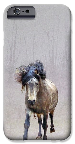 Paso Fino Stallion iPhone Cases - Out Of Nowhere iPhone Case by Patricia Keller