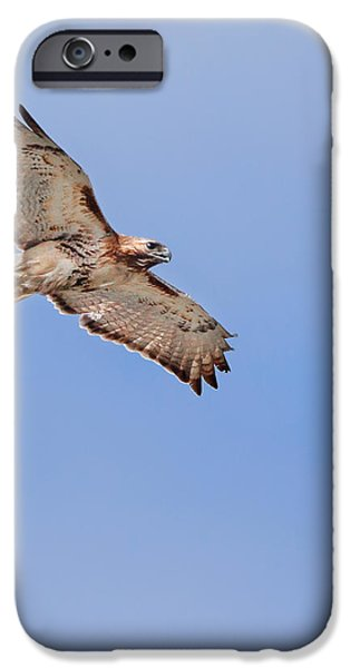 out of the blue square iPhone Case by Bill  Wakeley