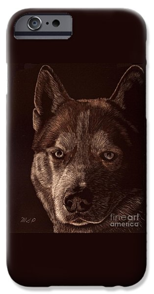 Husky Drawings iPhone Cases - Out of the darkness Portrait of a Husky iPhone Case by Margaret Sarah Pardy