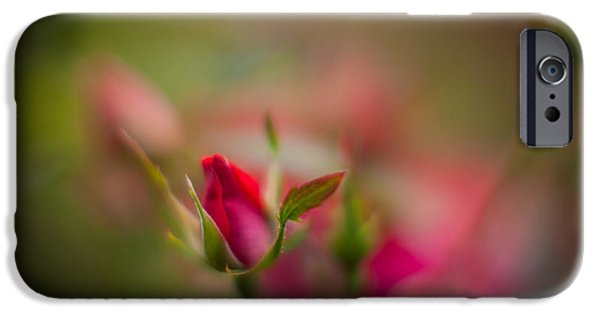 Floribunda iPhone Cases - Out of the Mist iPhone Case by Mike Reid