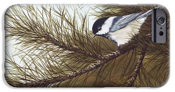 Chickadee iPhone Cases - Out on a Limb iPhone Case by Rick Bainbridge