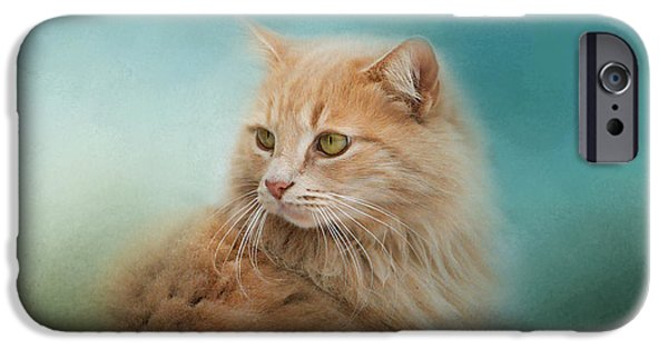 Orange Tabby iPhone Cases - Over Her Shoulder iPhone Case by Jai Johnson