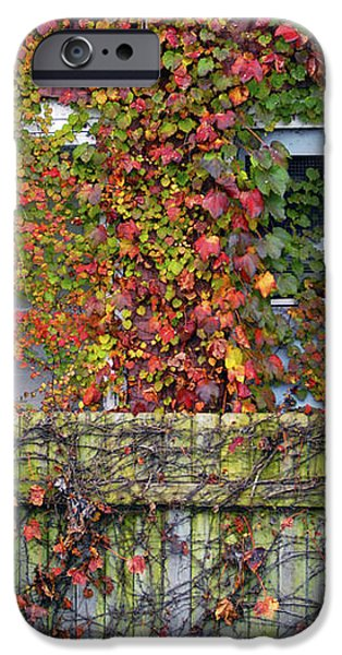 Over the Back Fence iPhone Case by Paul W Faust -  Impressions of Light