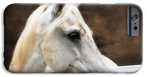 Horse iPhone Cases - Over The Fence iPhone Case by TN Fairey