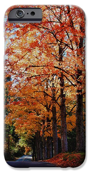 Over the hill and through the trees iPhone Case by Jeff Folger