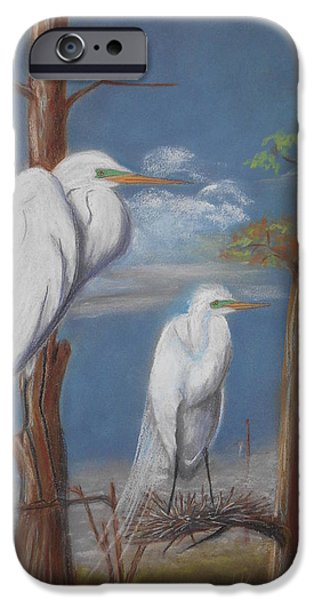 Snowy Pastels iPhone Cases - Over the Marsh iPhone Case by Charlyn LeJeune