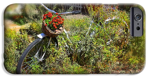 Basket iPhone Cases - Overgrown Bicycle with Flowers iPhone Case by Mike McGlothlen