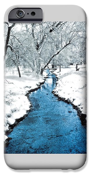 Dog In Landscape iPhone Cases - Overnight Snow in Edgemont Park iPhone Case by Kellice Swaggerty