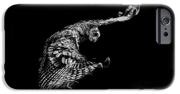 Grey Photographs iPhone Cases - Owl iPhone Case by Paul Neville