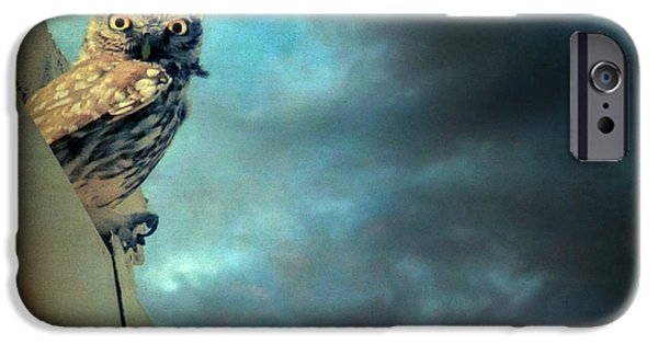 Poetic iPhone Cases - Owl iPhone Case by Taylan Soyturk