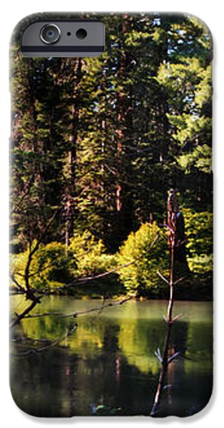 Oxbow Triptych iPhone Case by Peter Piatt