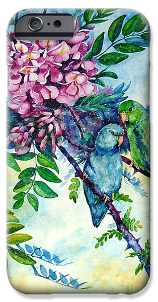 Pacific Parrotlets iPhone Case by Zaira Dzhaubaeva